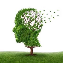 El Alzheimer desde una mirada holística (TESINA)